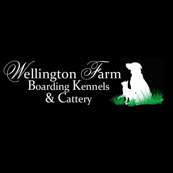 Wellington Farm Boarding Kennels and Cattery