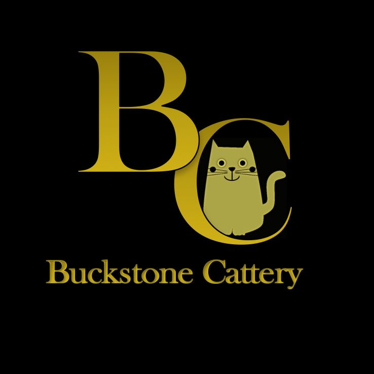 Buckstone Cattery