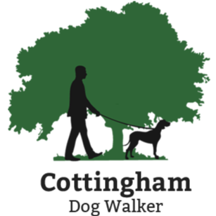 Cottingham Dog Walker