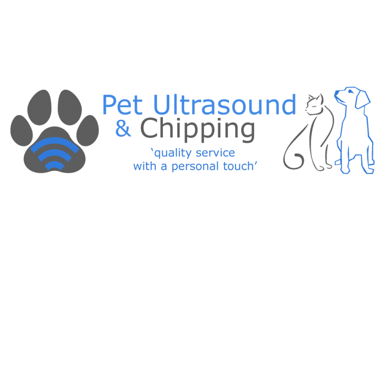 Pet Ultrasound & Chipping
