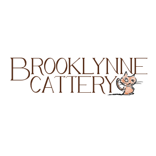 Brooklynne Cattery