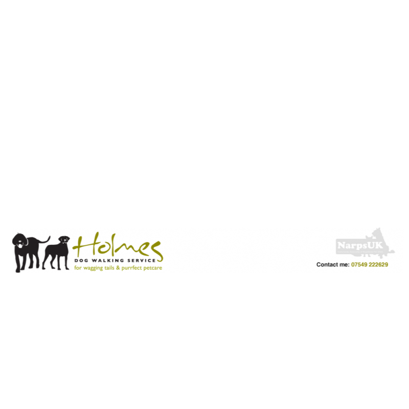 Holmes Dog Walking Service