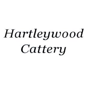 Hartleywood Cattery