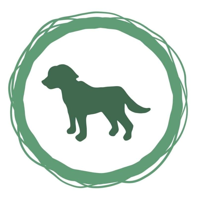 One dog training