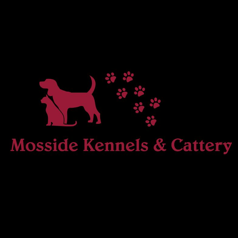 Mosside Kennels and Cattery