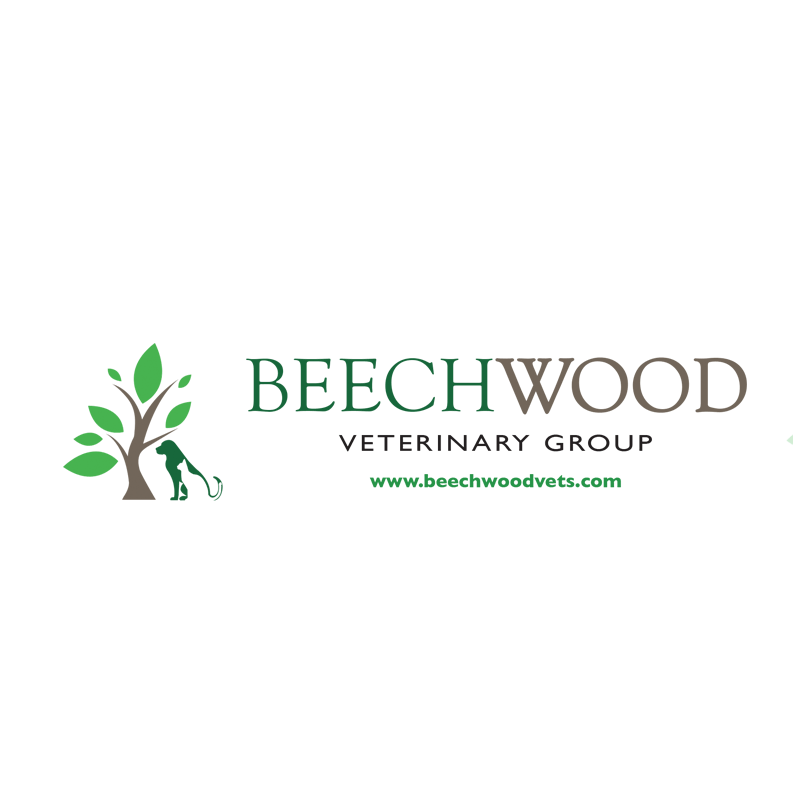 Beechwood Veterinary Group Chapel Allerton