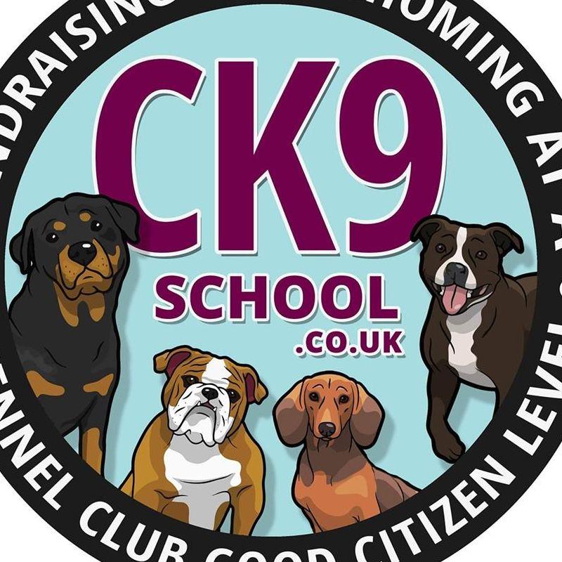 CK9 School