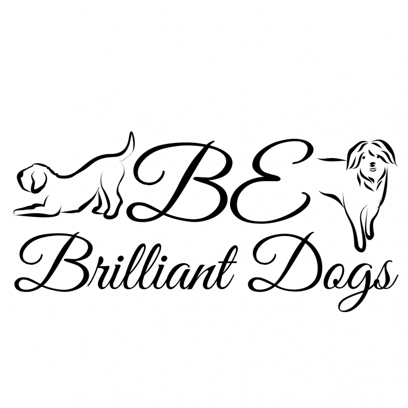 Be Brilliant Dogs