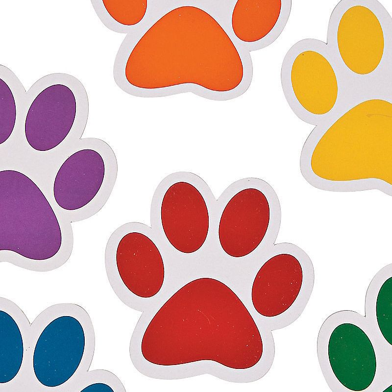 Sale dog walking and pet care