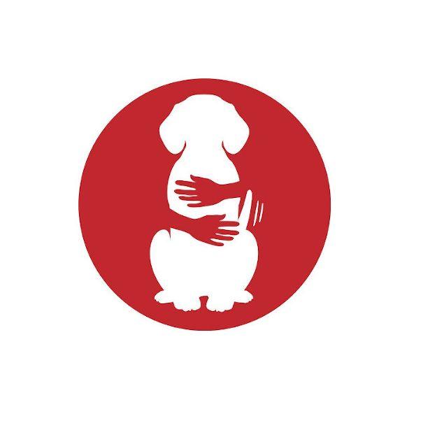 Cwtches Dog - Training & Behaviour